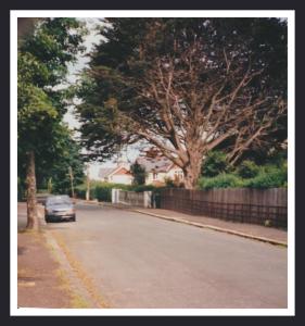 PortlandRd95001